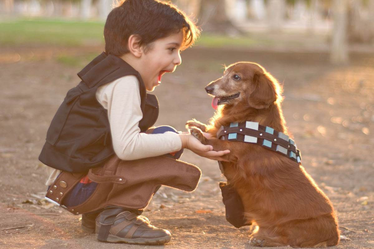 cani-e-bambini-giocano-insieme-sicuri